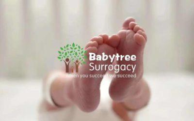 独家分享 行业揭秘 您一定要了解的赴美助孕那些事!#美国宝宝树#